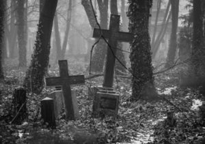 Illustration : tombes sous les bois : 'Georgen-Parochial-Friedhof'  http://www.flickr.com/photos/95329842@N02/32582553821 Found on flickrcc.net