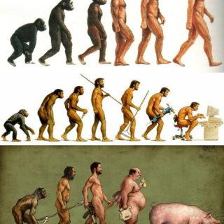 Images humoristique de l'évolution humaine - flicrcc