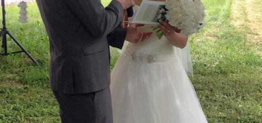 Cérémonie de mariage dans la nature (illustration) - photo MP