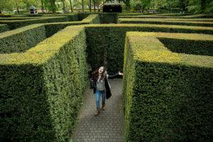 Illustration : une personne trouvant la sortie d'un labyrinthe de verdure - Image: 'finding the way out' http://www.flickr.com/photos/40425693@N00/36681253123 Found on flickrcc.net
