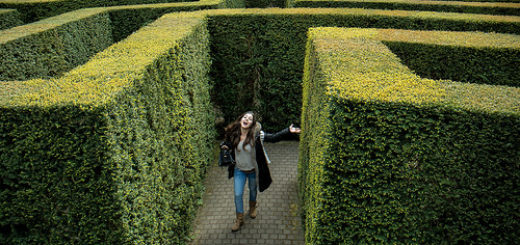 Une personne trouvant la sortie d'un labyrinthe de verdure (illustration) - 'finding the way out' http://www.flickr.com/photos/40425693@N00/36681253123 Found on flickrcc.net