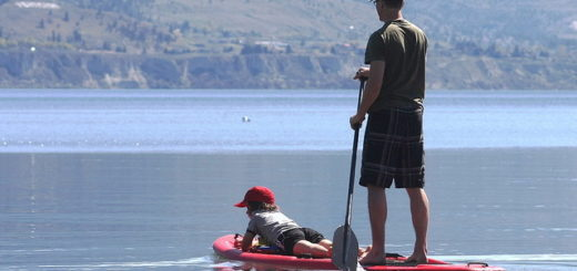 Un père et son fils naviguent sur un lac (illustration) - http://www.flickr.com/photos/48728884@N00/26305186552 Found on flickrcc.net