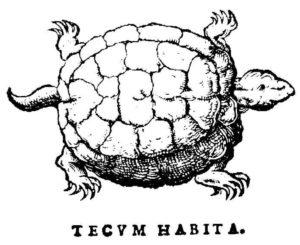 "Tortue ""Tecum Habita"" sur le premier livre de Jean Calvin"