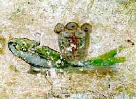 image chrétienne des premiers siècles : pains et poissons