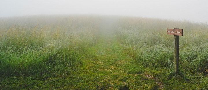 hésitation sur le chemin dans l'herbe par brouillard - Image parFree-Photos de Pixabay