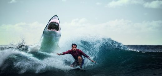 Illustration : un requin menaçant de manger quelqu'un - Image parThree-shots de Pixabay