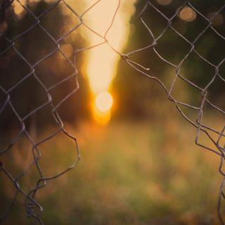 Grillage percé d'une large ouverture - Image parJohannes Plenio de Pixabay
