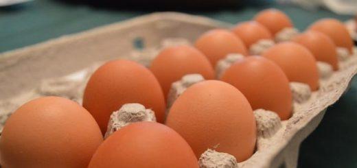 une boîte d'une douzaine d'œufs - Image par SeekDiscover de Pixabay