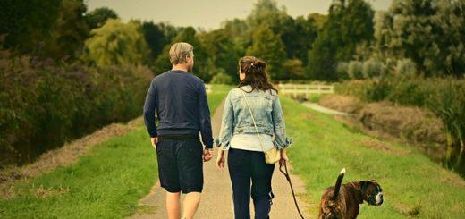 un couple se promène avec son chien en bavardant - Image parMabel Amber, still incognito... de Pixabay