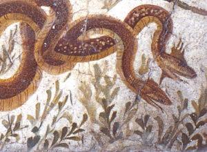 serpents - fresque du Ier siècle à Herculanum - Agatodemoni, serpents d'Herculanum , musée national d'archéologie de Naples