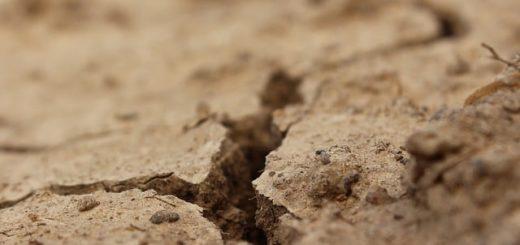 une terre desséchée, fissurée - Image par klimkin de Pixabay