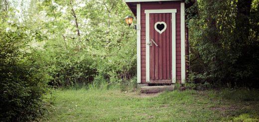 des WC au fond du jardin - Image par kerttu de Pixabay