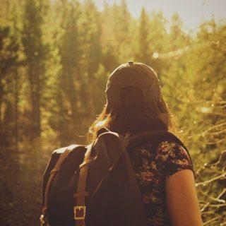 fille vue de dos, randonnant en forêt embroussaillée - Image par Free-Photos de Pixabay